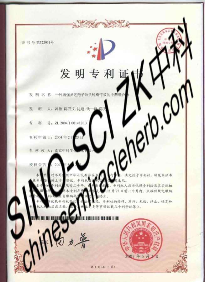 Patent Certification SINOSCIZK 01 & 02