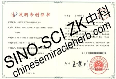 Patent Certification SINOSCIZK 01
