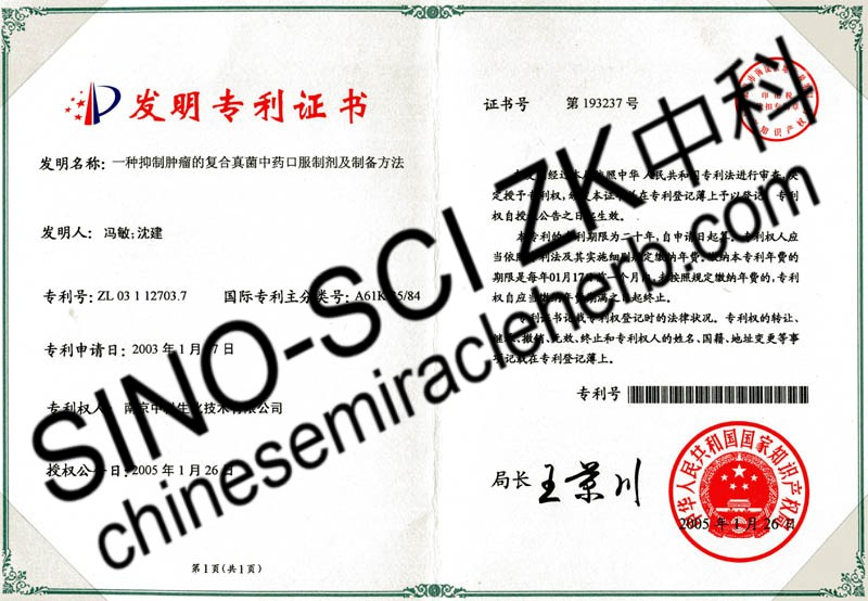 Patent Certification SINISCIZK 02
